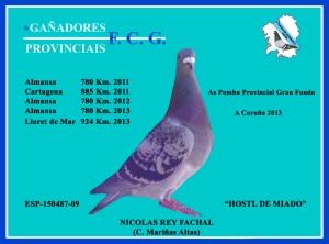 as-pomba-g-fondo-provinvial-a-coruc3b1a2