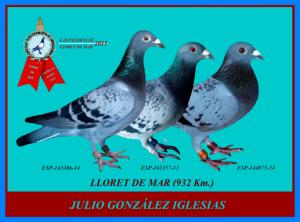 Llorets Lito