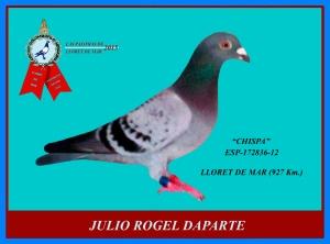 rogel-lloret-2015