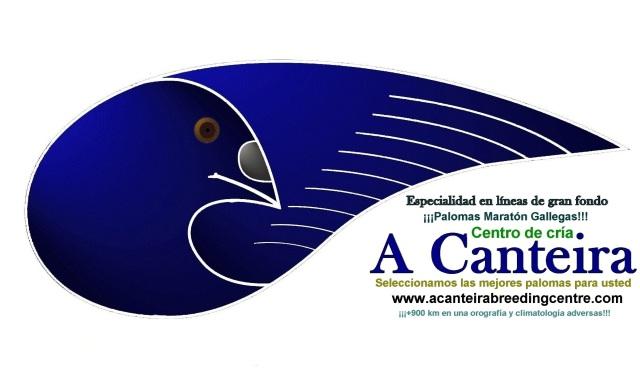 Logo A Canteira 2017